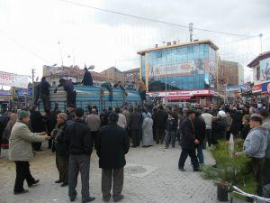 Bolvadin'de 5 Bin Çam Fidanı Dağıtıldı