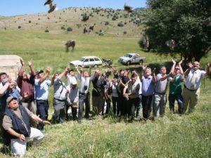 500 Keklik Doğaya Bırakıldı