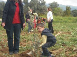 Ödemiş İnönü İlkokulu, Zeytin Fidanlarını Toprakla Buluşturdu