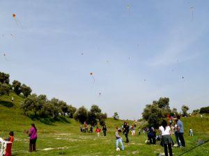 Sökede Çocuklar Karnaval ve Uçurtma Şenliği ile Eğlendi