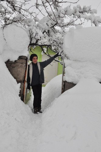 Bitlis'te 106 Köy Ulaşıma Kapandı